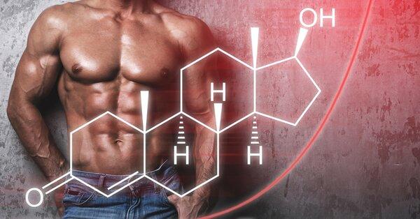 Spolehlivý doplněk stravy testosteron nedodává, může však podpořit jeho přirozenou tvorbu