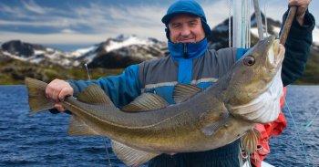 Historie rybího tuku