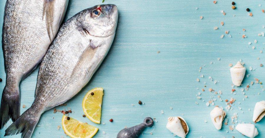 Mořské ryby – jsou lepší než sladkovodní?